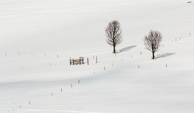 Winter14-1501