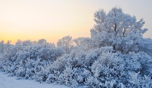 Winter14-1505