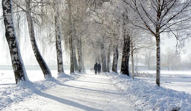 Winter14-1507