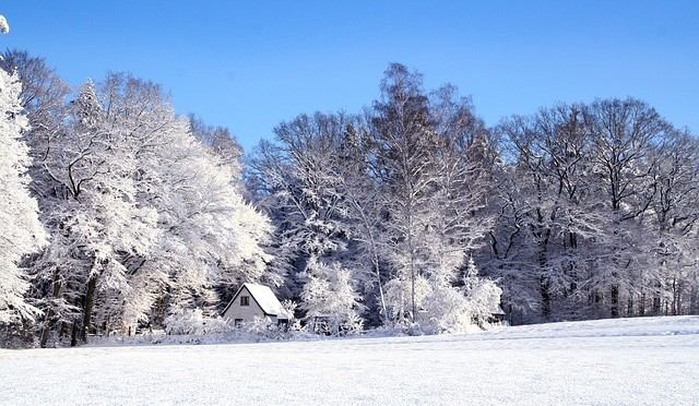 Winter14-1509