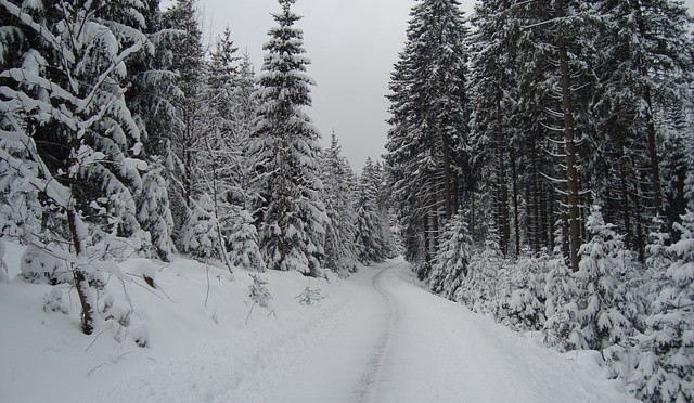 Winter14-1512